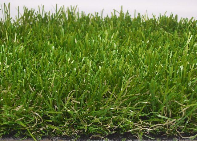 横から見た人工芝