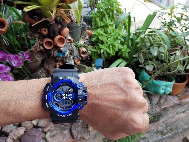 防水腕時計と植物
