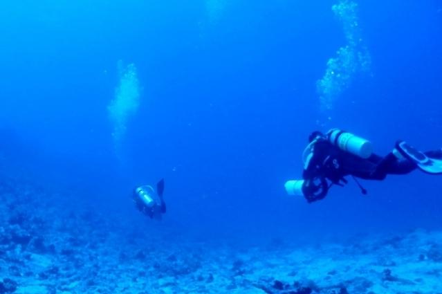 海中でダイビング