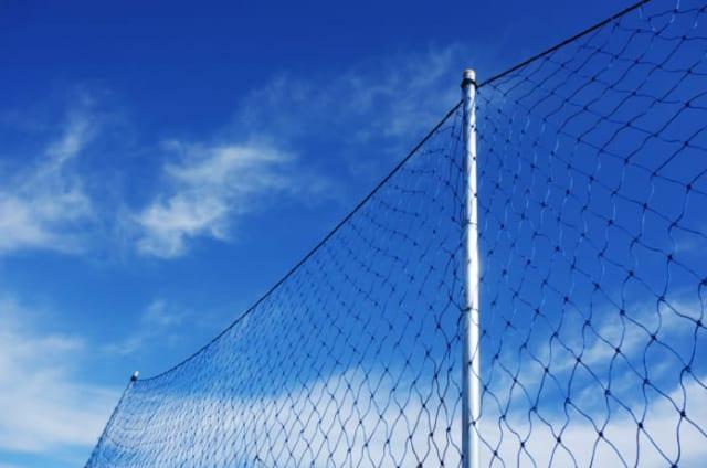 ブルーベリーに鳥よけネットハウスをDIYしてみた …