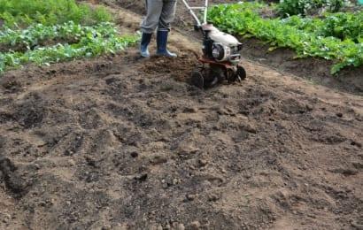 耕うん機で畑を耕す人