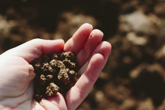 手のひらにのせた土