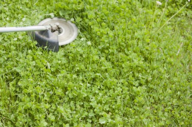 草刈機チップソー