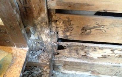 シロアリ被害を受けた家の土台