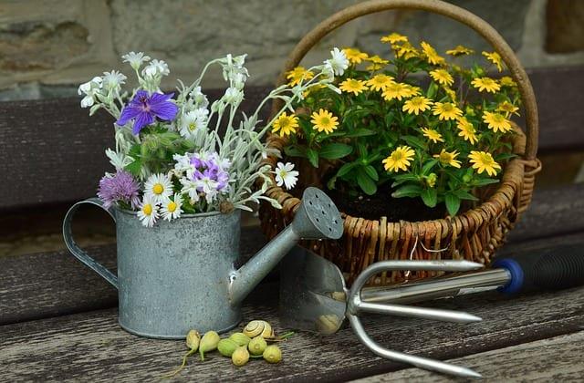 花の飾られた棚
