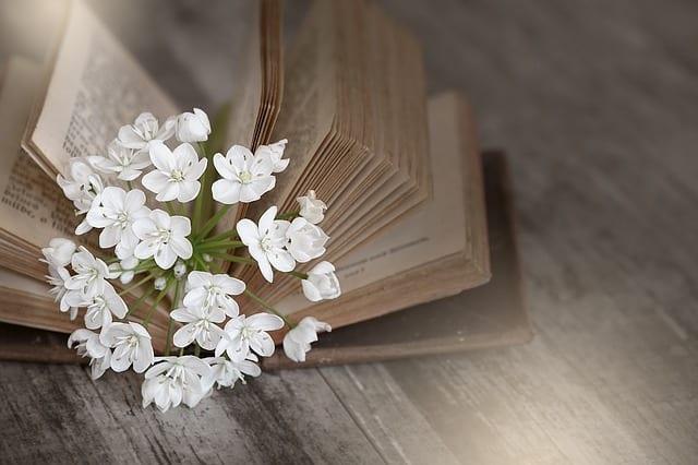 アリウムの花言葉は「深い悲しみ」など