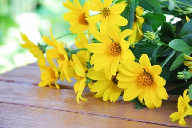 菊芋の花は黄色