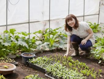 【用途別】培養土の作り方や使い方!