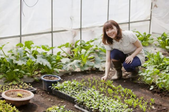 培養土の作り方、使い方の紹介をします!