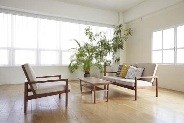 陶器の植木鉢は、部屋の中での存在感あり
