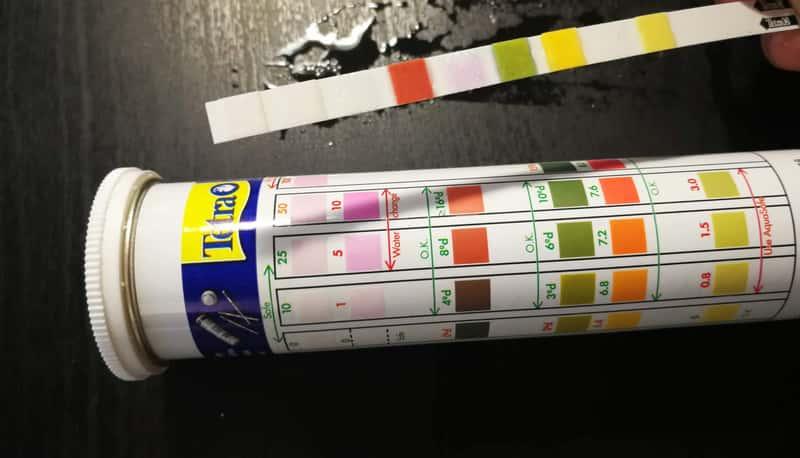水質検査紙