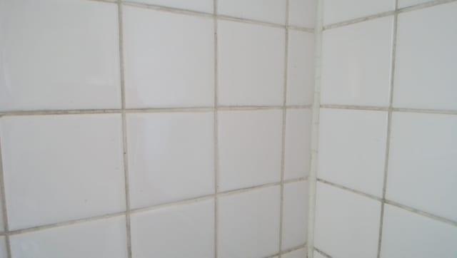 浴室タイルの目地の黒カビ