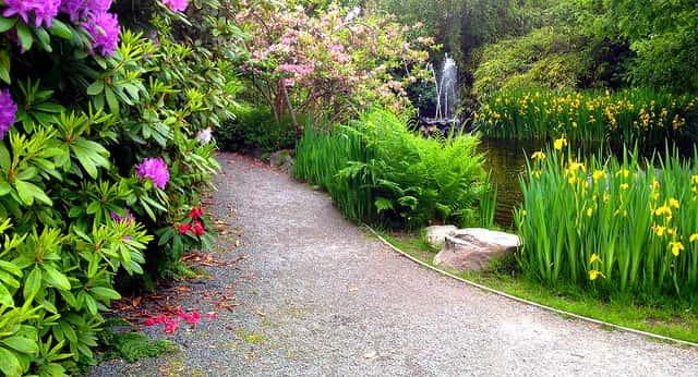 庭の砂利敷きの小道