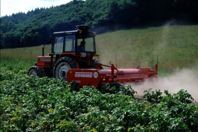 ジャガイモ、防除作業