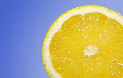 柑橘系は夏バテに効く