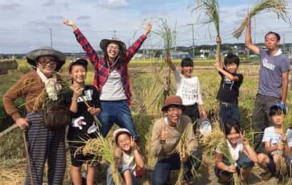 稲刈りを楽しむ人々