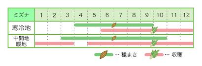 新規就農レッスン 栽培カレンダー ミズナ