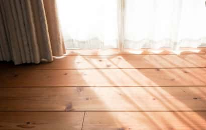 カーテンから日差しが差し込む