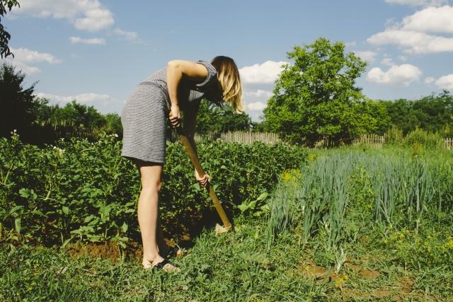 鍬を使う女性