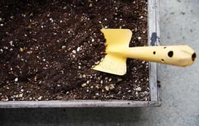 培養土に移植ごてが刺さっている