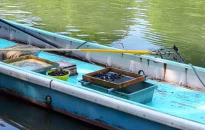 小舟の上に漁に使う道具が積んである。