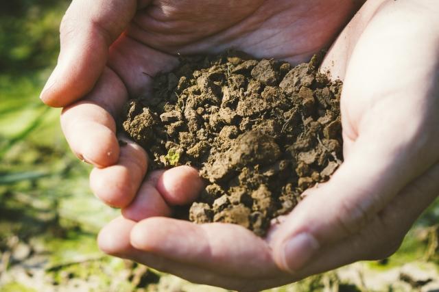 土、土壌消毒
