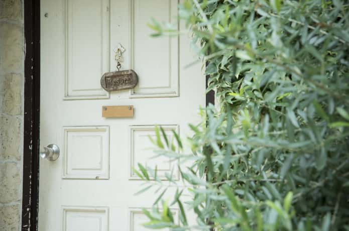玄関前のオリーブの木