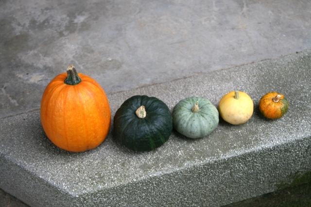 コンクリートの上のおもちゃかぼちゃ