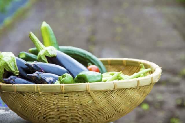 籠に入った夏野菜