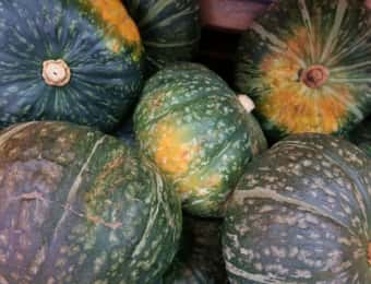かぼちゃ変色