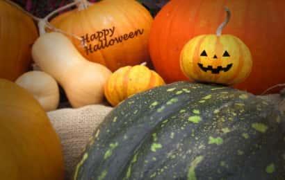 ハロウィンのおもちゃかぼちゃのディスプレイ