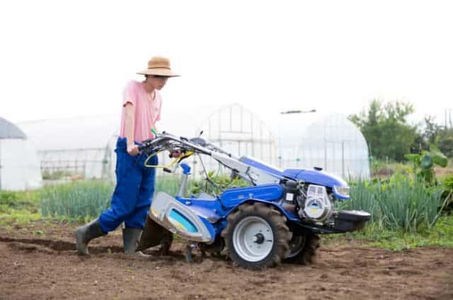 農作業をする若者