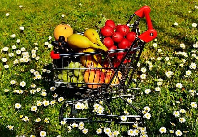 白い花が咲く草原の上に、バナナ、赤カブ、オレンジ、マスカットが乗っている小さなカート