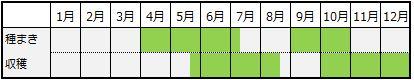 ルッコラの栽培カレンダー