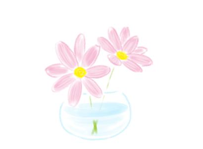 コスモス 切り花