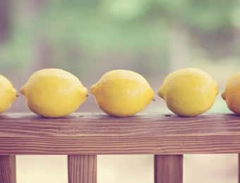 の柵にレモンが数個並んでいる