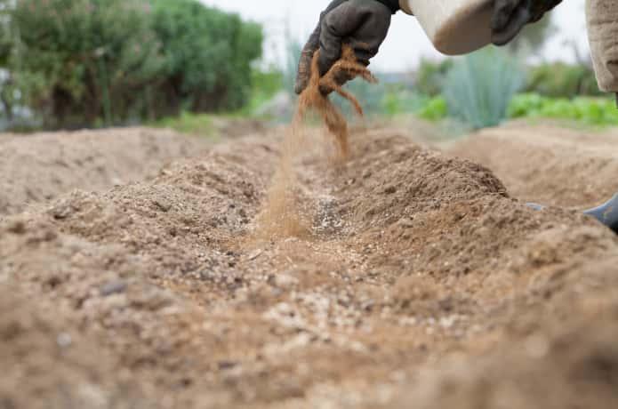 畑に骨粉などの肥料をまいていい土を作る