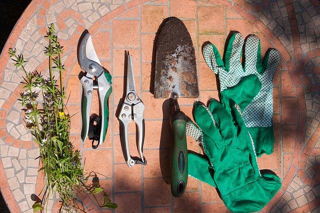 剪定のためのシャベル、剪定ばさみ、手袋など