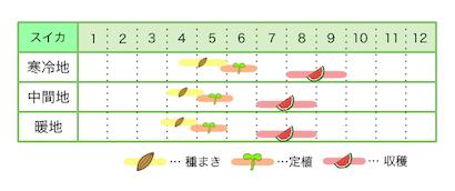 新規就農レッスン 栽培カレンダー スイカ
