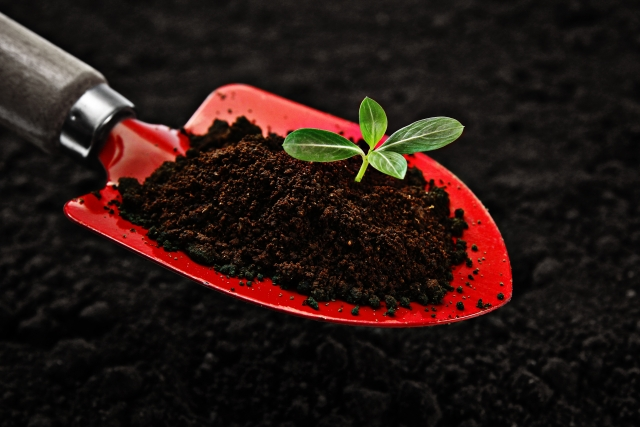苗が元気に育つようにスコップで土作り