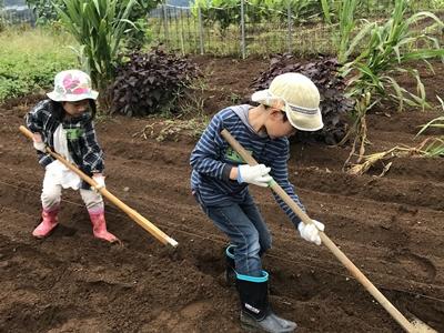 畑を耕す子どもたち