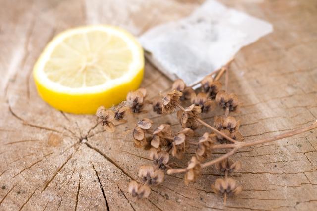 レモンの輪切りと芳香剤とドライフラワー