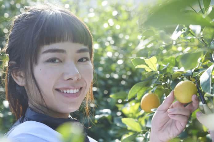 レモンを収穫する女性
