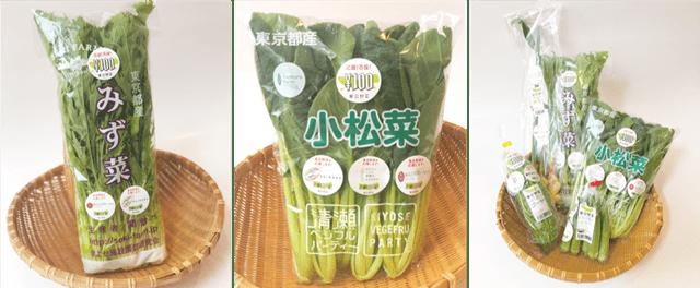 東京野菜の小松菜