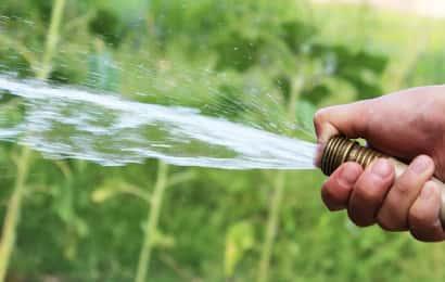 ホースで水をかける