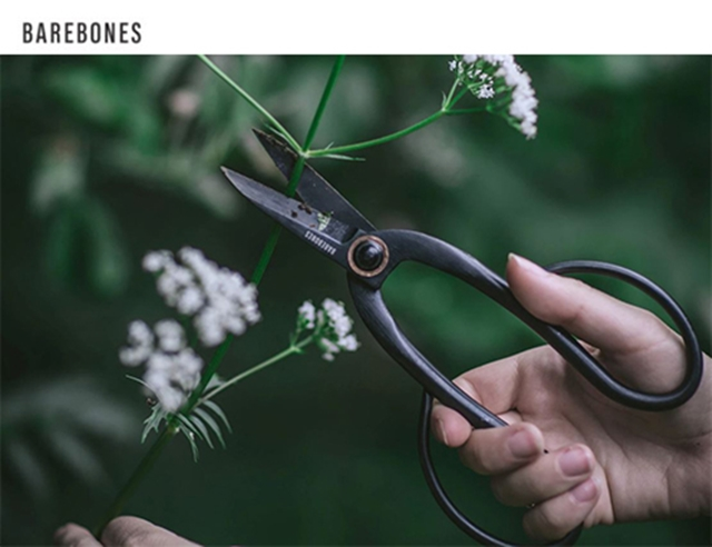 剪定ばさみで花を切っている様子