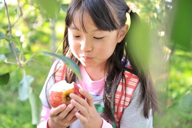 りんごをかじる女の子