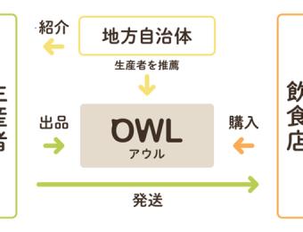 アウル概念図