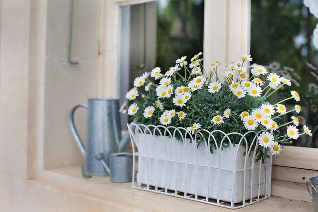 おしゃれな長方形のプランターと花