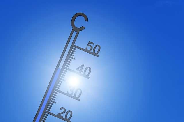 ハウス栽培、温度管理